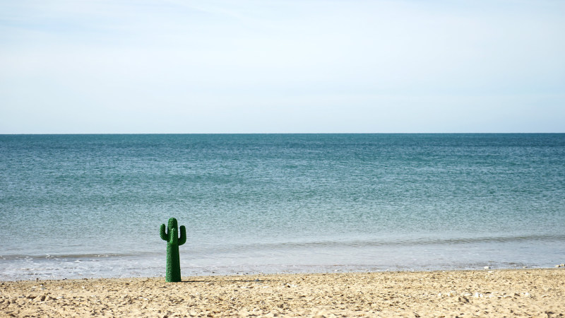 Gufram Cactus on beach